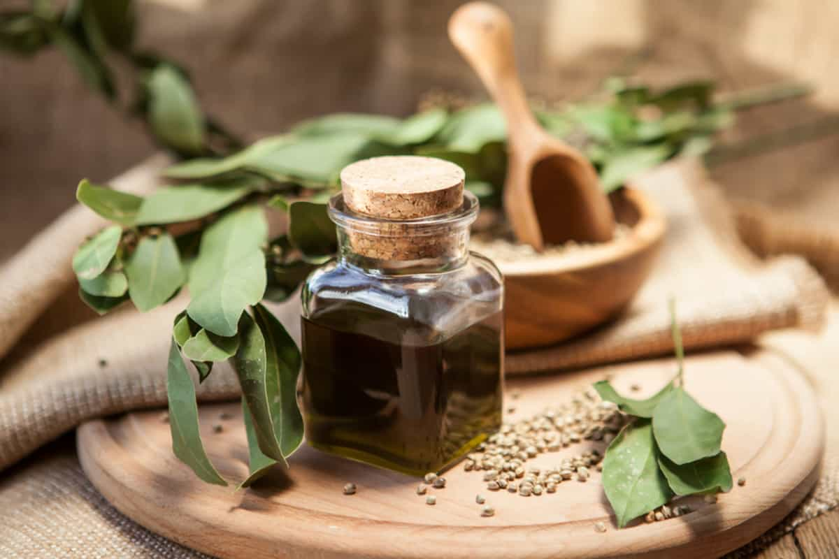 Seed Oil Benefits For Skin